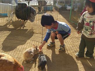 一日動物園_c0197584_16222224.jpg