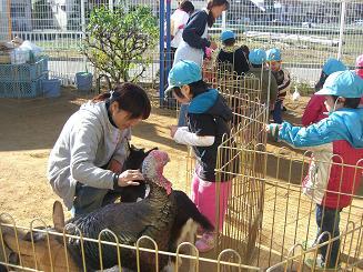 一日動物園_c0197584_16255694.jpg