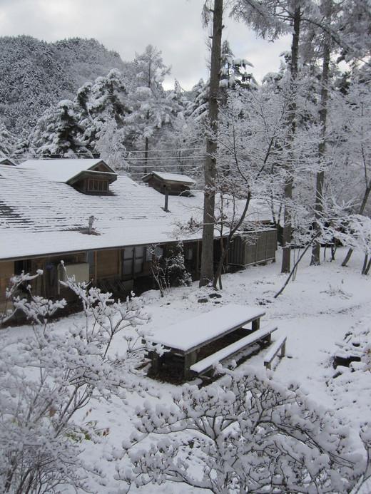 初雪景色_a0170699_15162786.jpg