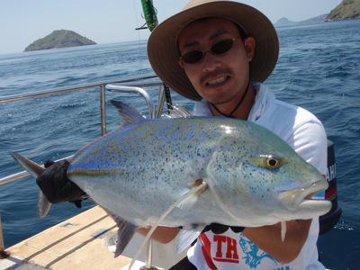 店長渡辺 コモド島へGTに会いに行ってきました。 _a0153216_1228081.jpg