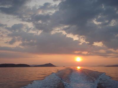 店長渡辺 コモド島へGTに会いに行ってきました。 _a0153216_1246458.jpg
