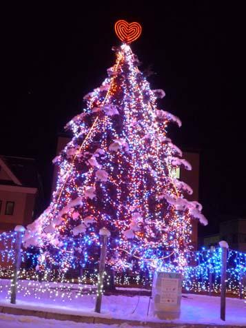 今年のツリー_f0096216_2094264.jpg