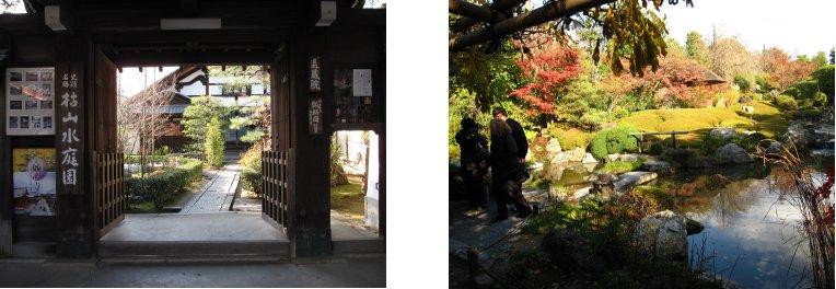 京都錦秋編(21):妙心寺退蔵院(09.12)_c0051620_6295296.jpg