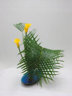 植物を編む_c0165824_1515816.jpg