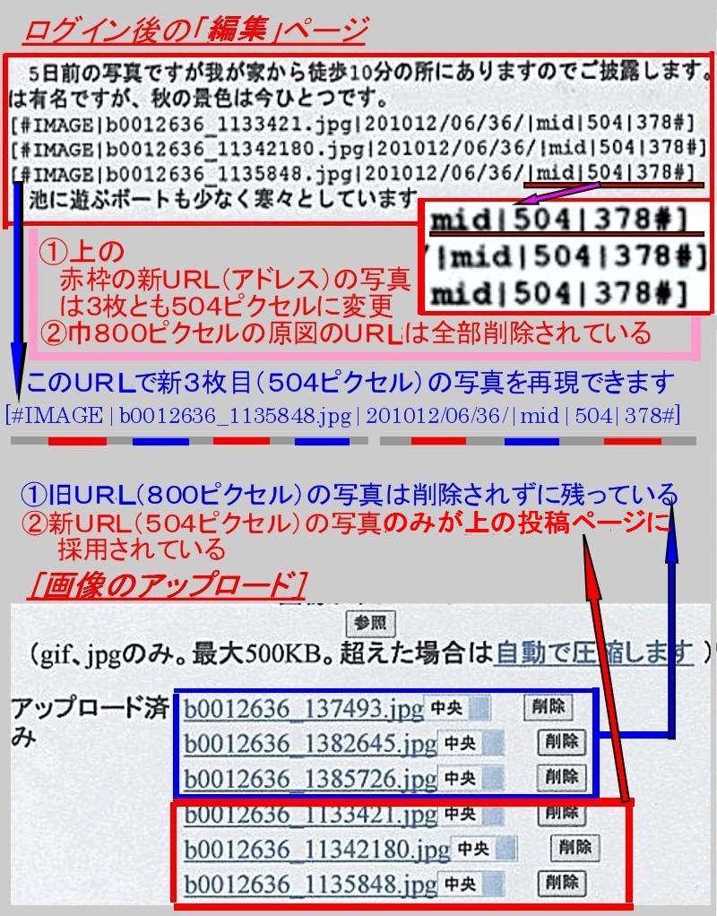 b0012636_169434.jpg