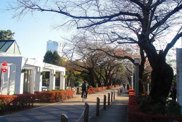 <2010年12月1日>港区探訪(その6):「麻布・青山・赤坂」編_c0119160_13133799.jpg