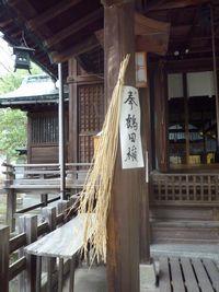 天照神社(2)奉納された稲穂の由来_c0222861_21431850.jpg