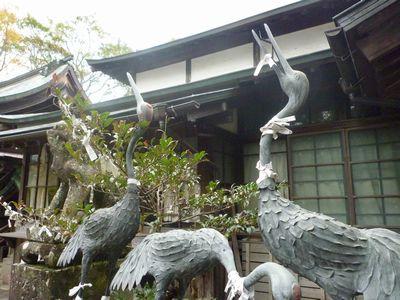 天照神社(2)奉納された稲穂の由来_c0222861_21475551.jpg