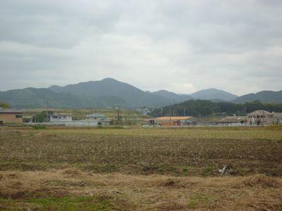 天照神社(2)奉納された稲穂の由来_c0222861_2152487.jpg