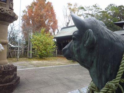 天照神社(2)奉納された稲穂の由来_c0222861_215431100.jpg