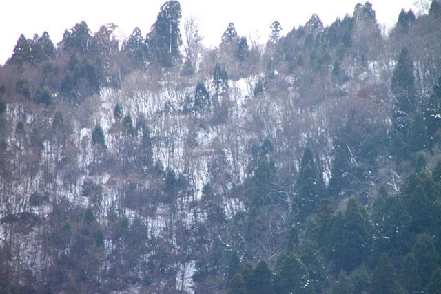 佐々里峠は雪_e0048413_21361474.jpg