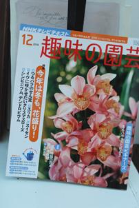 NHK教育 趣味の園芸「フルール」に出演します。_f0179528_23565598.jpg
