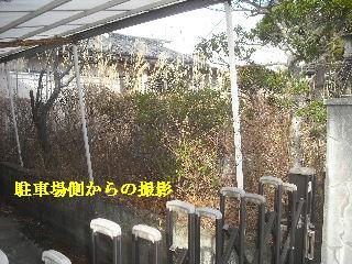 f0031037_14404073.jpg