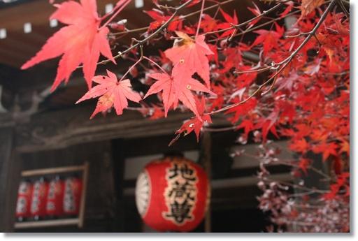 もう1回紅葉を楽しんで_c0049950_1565774.jpg