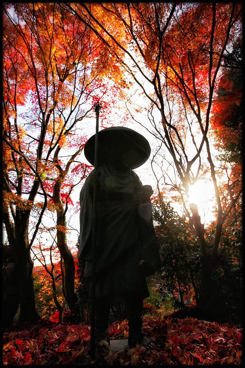 紅葉 2010 <金蔵寺>  5_f0021869_23463595.jpg