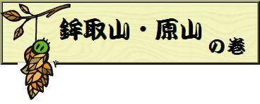 d0174983_2013586.jpg