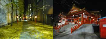 光と色の中を (新宿区)_d0132289_1329513.jpg