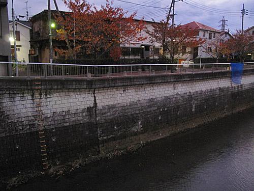 貫井川の暗渠(川跡)を辿る(3)下流部分流と向山ヶ谷戸支流_c0163001_23271237.jpg
