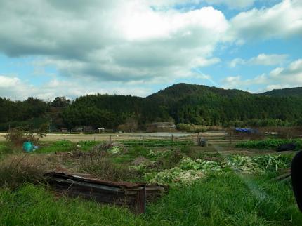わづかにひたるとき 木津川エアーズロックと郷愁の奈良盆地_c0069903_1492763.jpg