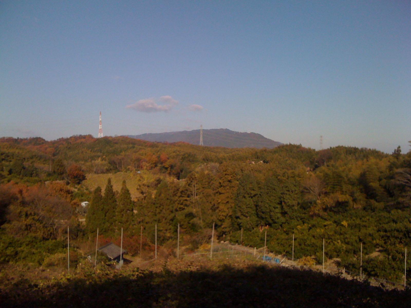 水谷農園 mizutani nouen_c0061727_15201729.jpg