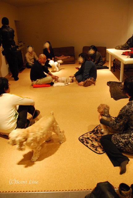 第4回「愛犬の為の整体教室」の模様 その2_c0099133_21153470.jpg
