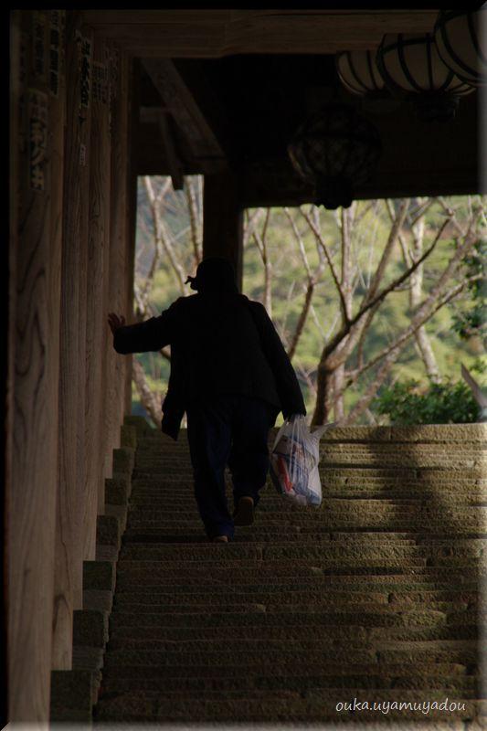 晩秋の長谷寺-2-_a0157263_23132663.jpg