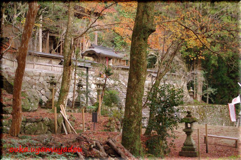 長谷寺脇のお宮さん_a0157263_23371983.jpg