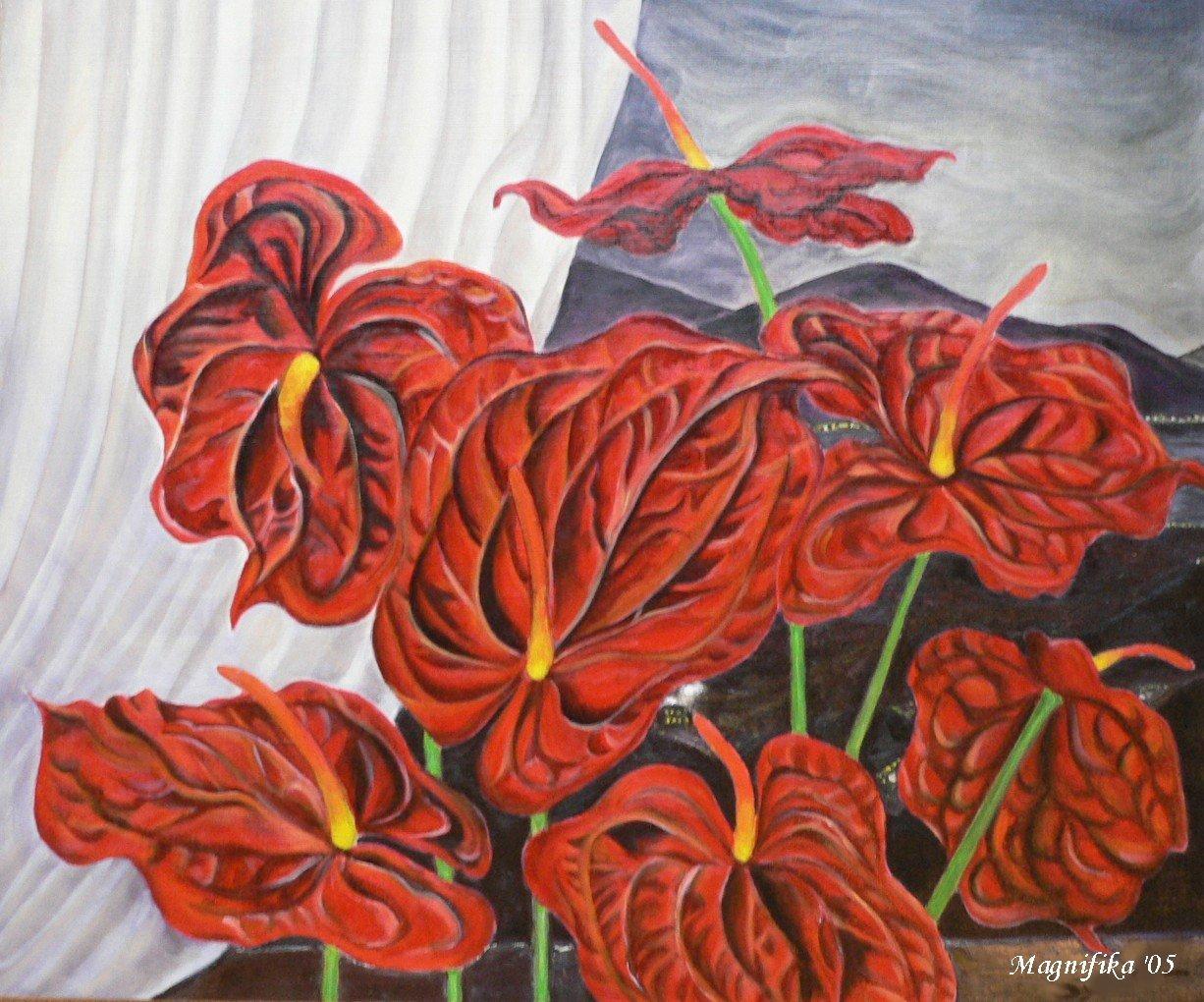 my gallery 9: anthuriums  アンスリューム 20号 © \'05_e0140365_20191664.jpg
