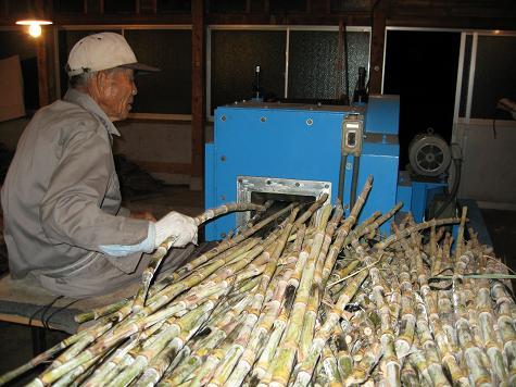白玉糖作り_e0101917_11585626.jpg