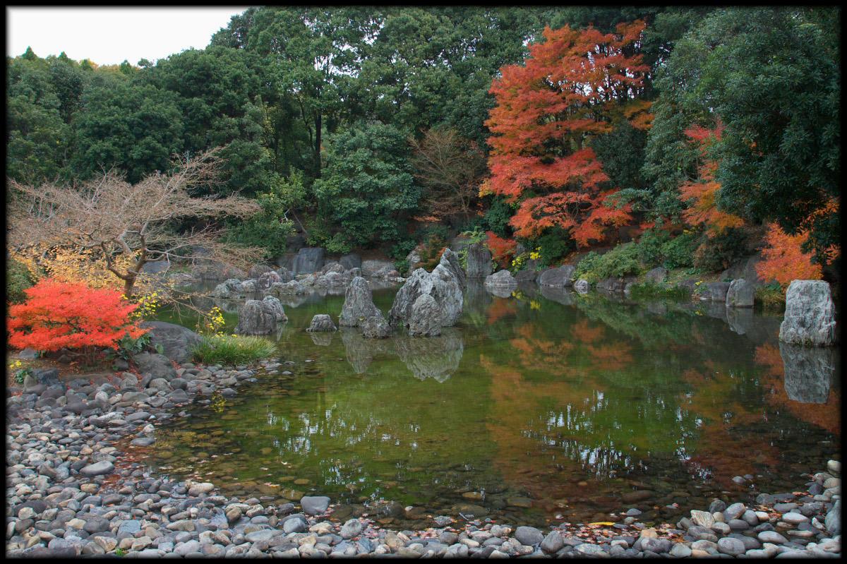 紅葉 2010 <万博記念公園> _f0021869_2065151.jpg