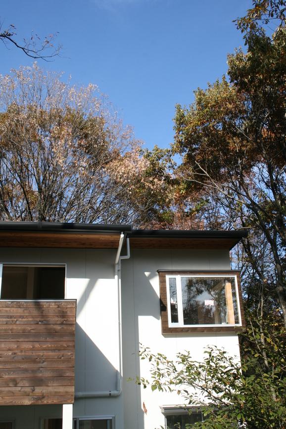「木立の家」もうすぐ完成です!_e0215179_17314938.jpg