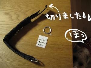 b0092580_0404.jpg