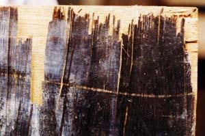 油彩画のコンディション観察講座 27「ベニア絵画の劣化 」_f0223981_16255158.jpg