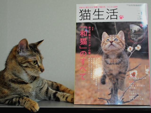 楽しかったよ、「Wan1月号」の取材!_a0126590_23555427.jpg