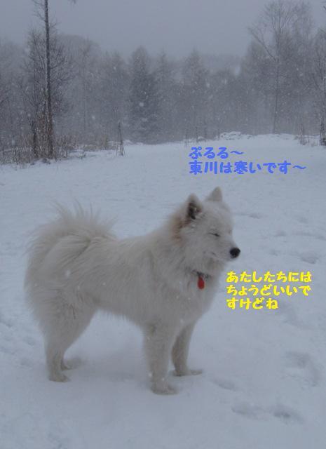 f0212597_9261810.jpg