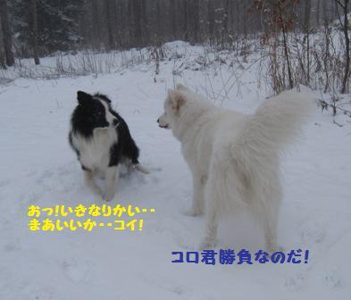 f0212597_9271552.jpg
