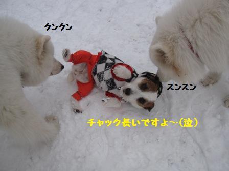 f0212597_9404692.jpg
