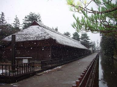 雪です! 清水園_e0135219_9425227.jpg