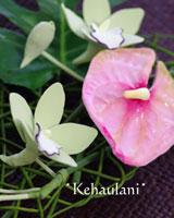 f0129740_2010593.jpg