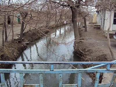 【JEN通信】2010年活動報告~アフガニスタン~_e0105047_14104327.jpg