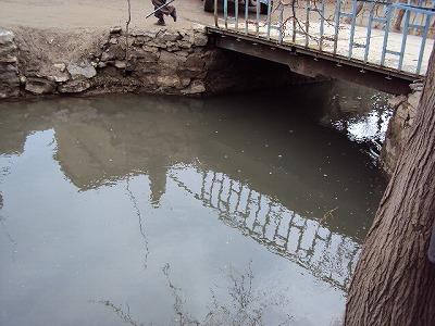 【JEN通信】2010年活動報告~アフガニスタン~_e0105047_141184.jpg