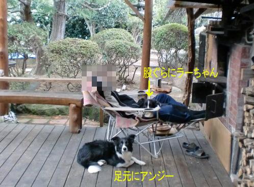 f0213553_20121230.jpg