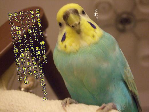 f0149057_045925.jpg