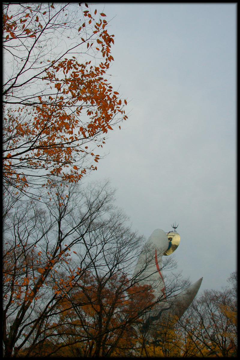 紅葉 2010 <万博記念公園> _f0021869_17311595.jpg