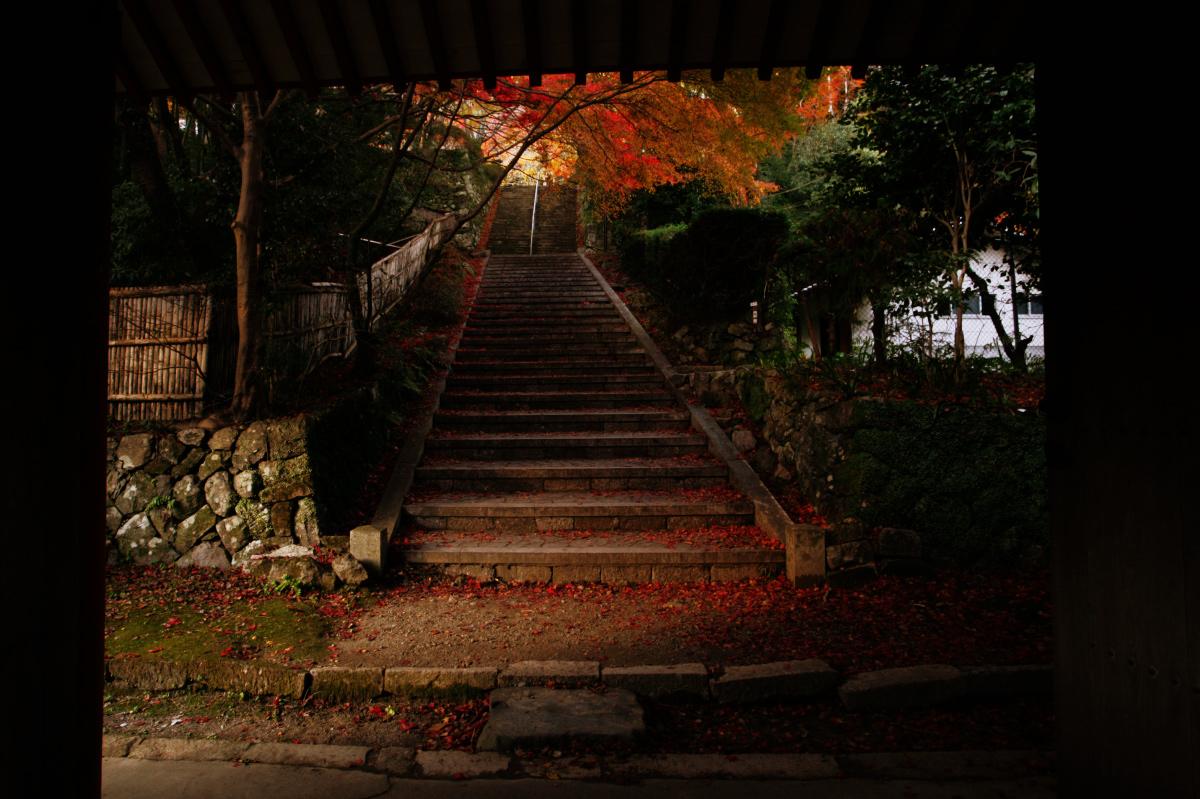 紅葉 2010 <金蔵寺> 7_f0021869_23181739.jpg