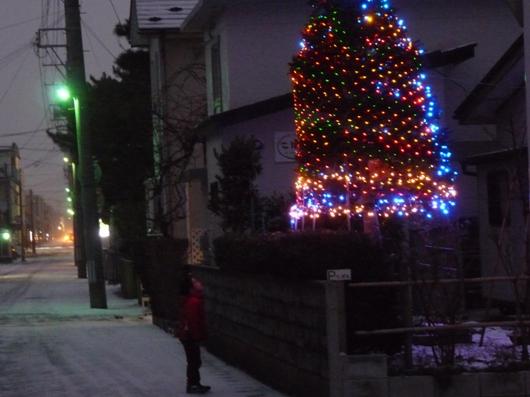 クリスマスイルミネーション_e0188574_20402712.jpg