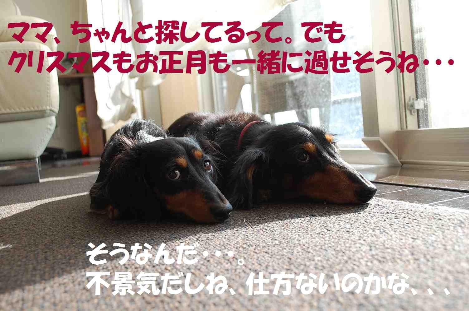 f0162078_13363069.jpg