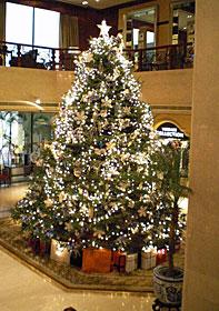 Christmas! @Macou_b0195783_16545416.jpg