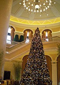 Christmas! @Macou_b0195783_16563344.jpg