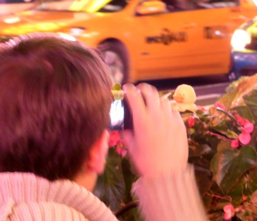 ニューヨーク旅行のお供はアヒルくん?_b0007805_1333376.jpg